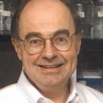 Kernicterus Research